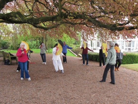 8 Sam taught a group the beautiful Tai Chi Fan Form