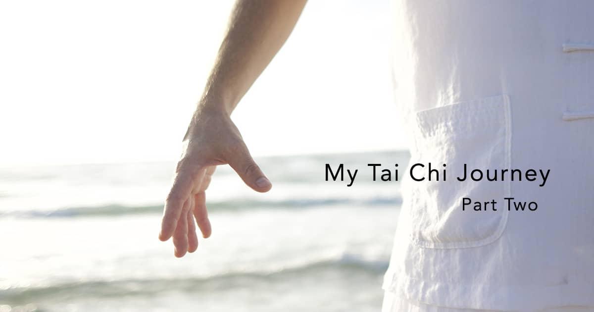 tai chi journey part 2