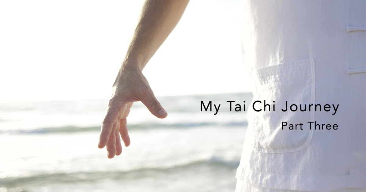 tai chi journey part 3